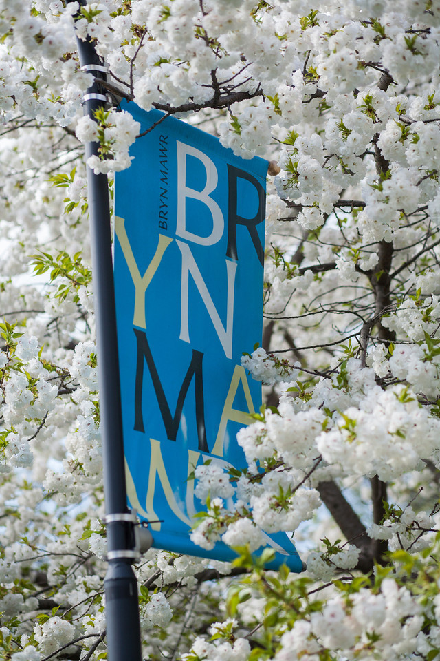 bmc_banner