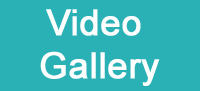 video gallery button_edited-1